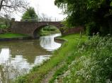 Grassy towpath and Leicester Canal Bridge 15